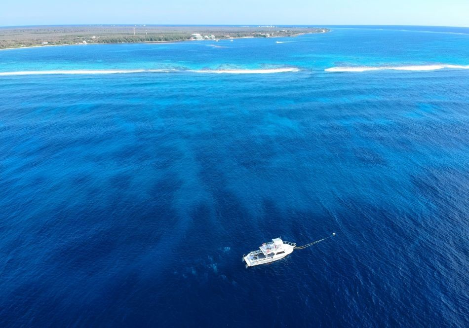 Ocean-Frontiers-Boar-Aerial-x2000